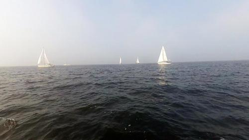 2014-09-06 regatta 02