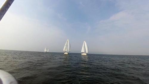 2014-09-06 regatta 11