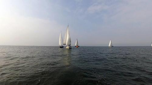 2014-09-06 regatta 11 2