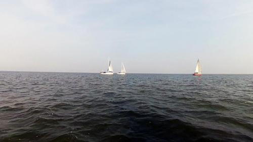 2014-09-06 regatta 12