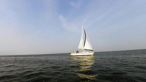 2014-09-06 regatta 13