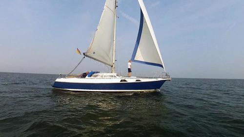 2014-09-06 regatta 14